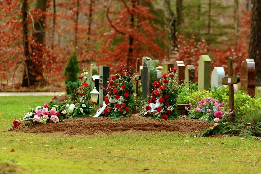 Halle kiest voor een andere aanpak op de begraafplaatsen